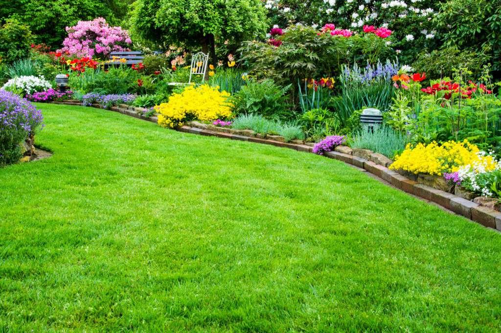 Rasenflche mit Garten im Hintergrund